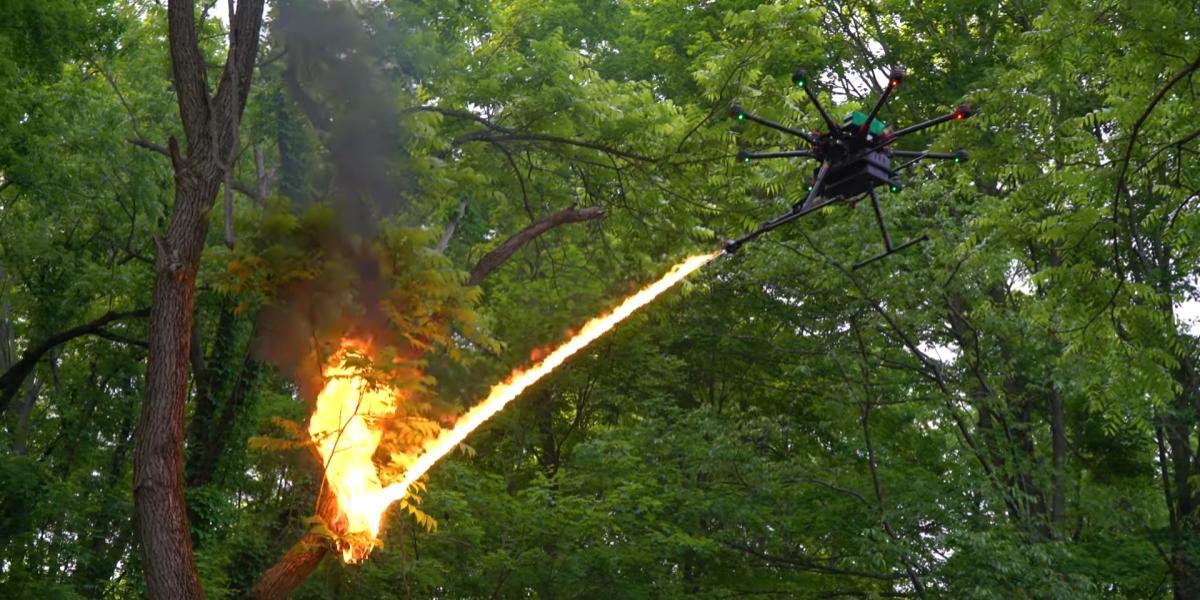drone lanciafiamme utilizzato per rimuovere un nido di vespe nella foresta